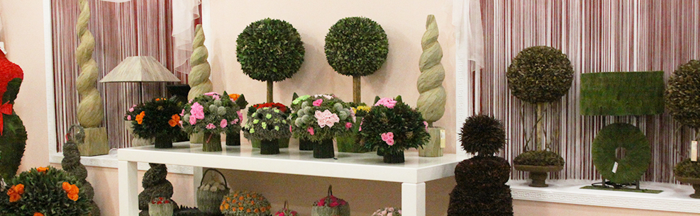 Стабилизированные цветы купить оптом